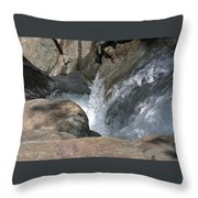 Water Womb  Throw Pillow