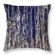 Water Wonder Throw Pillow
