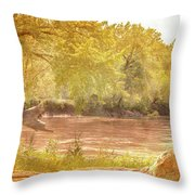 Water Works #3 Throw Pillow