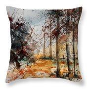 Watercolor  040902 Throw Pillow