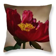 Watercolor Beauty Throw Pillow