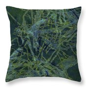 Edition 1 Watercolor Moss Throw Pillow