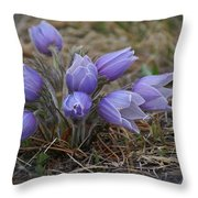 Watercolor Pasque Flowers Throw Pillow