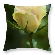 Watercolor Rose Throw Pillow