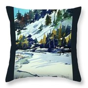 Watercolor_3517 Throw Pillow