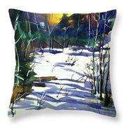 Watercolor3538 Throw Pillow