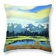 Watercolor3620 Throw Pillow