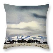 Watercolor3970 Throw Pillow