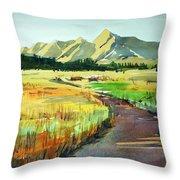 Watercolor4476 Throw Pillow