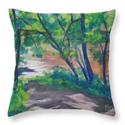 Watercress Beach On The Current River   Throw Pillow