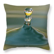 Waterdrop Throw Pillow