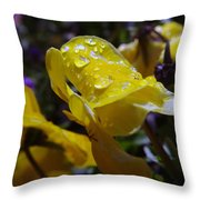 Waterdrops On A Pansy Throw Pillow