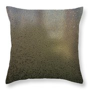 Watered Vision Throw Pillow