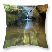 Waterfall And Reflection Throw Pillow