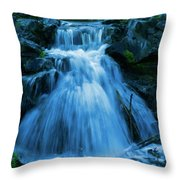 Waterfall At Finch Arboretum Throw Pillow