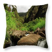 Waterfall At The Iao Needle Throw Pillow