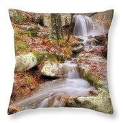 Waterfall Atop Petit Jean Mountain - Arkansas - Nature Throw Pillow