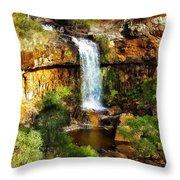 Waterfall Beauty Throw Pillow