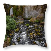 Waterfall Chillin'  Throw Pillow