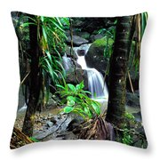 Waterfall El Yunque National Forest Mirror Image Throw Pillow