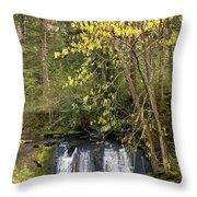 Waterfall In A Park, Whatcom Creek Throw Pillow