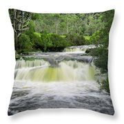 Waterfall In Cradle Mountain Throw Pillow