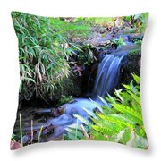 Waterfall In The Fern Garden Throw Pillow