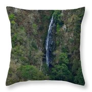 Waterfall In The Intag Throw Pillow
