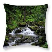 Waterfall Medley Throw Pillow