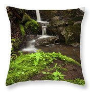 Waterfall Oasis  Throw Pillow