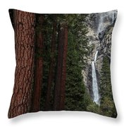 Waterfall Of Pines Throw Pillow