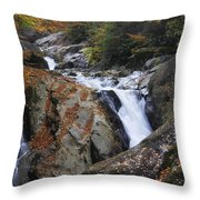 Waterfall On West Fork French Broad River Throw Pillow