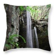 Waterfall Portrait Throw Pillow