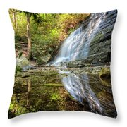 Waterfall Reflections Throw Pillow