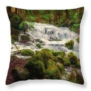 Waterfall Reverie Throw Pillow