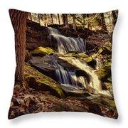 Waterfall Through The Trees Throw Pillow