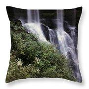 Waterfall Wildflowers Throw Pillow