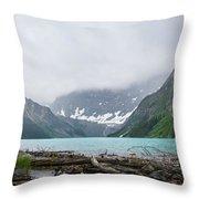 Waterfowl Lakes Throw Pillow