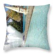 Waterfun  Throw Pillow