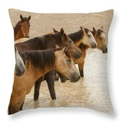Waterhole Band Throw Pillow