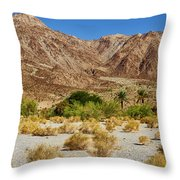 Waterhole Throw Pillow