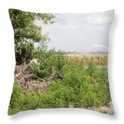 Watering The Weeds Throw Pillow
