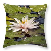 Waterlily On The Water Throw Pillow
