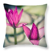 Waterlily Twins - Tropical Dream In The Pond Throw Pillow by Priya Ghose