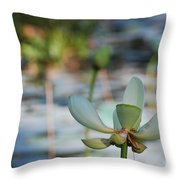Waterlily Wash Horizontal Throw Pillow
