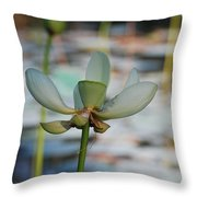 Waterlily Wash  Vertical Throw Pillow