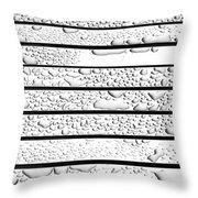 Watermarked 4 Throw Pillow