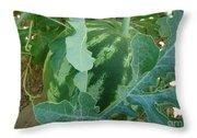 Watermelon Season  Throw Pillow
