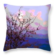 Watermelon Sky Throw Pillow by Barbara Schultheis