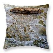 Watermovementstudy 1.1 Throw Pillow